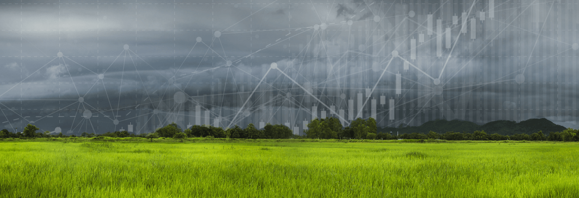 Weathering the Storm: 4 Time-Tested Investment Strategies